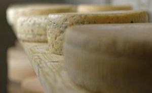 Spannende Kombinationen - Bier & Käse